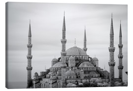 Lienzo  the blue mosque in Istanbul / Turkey - gn fotografie