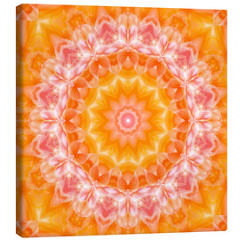 Lienzo  Mandala - You are loved - Dolphins DreamDesign