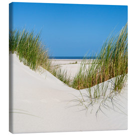 Lienzo  the coastline of the german sea on the island Norderney (Germany) - gn fotografie