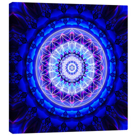 Lienzo  Mandala safety  with flower of life - Christine Bässler