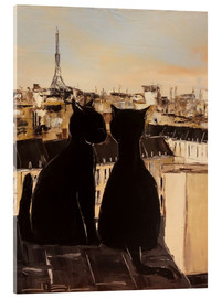 Metacrilato  Cats on the roofs of Paris - JIEL