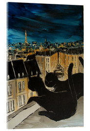 Metacrilato  The roofs of Paris - JIEL