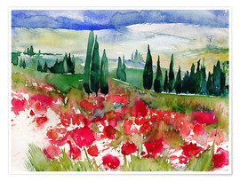 Póster  Tuscan Poppies - Jitka Krause