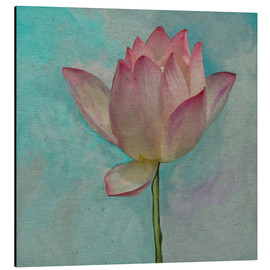 Cuadro de aluminio  Pink Lotus on Turquoise Blue - John Lang Art Gallery