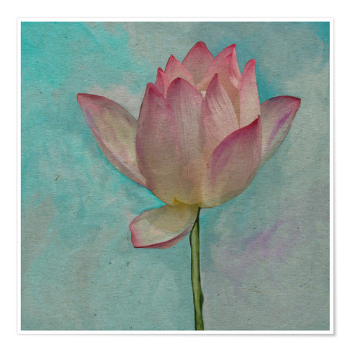 Póster Pink Lotus on Turquoise Blue