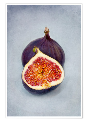 Póster figues violettes II