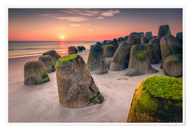 Póster Tetrapods at sunset (Hoernum/Sylt)