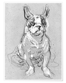 Póster  'Bouboule', the bulldog of Madame Palmyre at La Souris - Henri de Toulouse-Lautrec