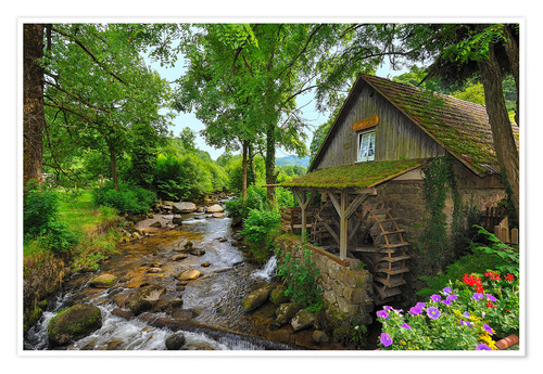 Póster Mill in the black forest
