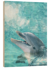 Madera  Dolphin - Humor - Dolphins DreamDesign