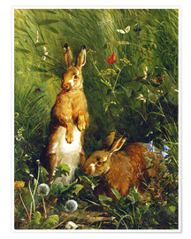Póster  Rabbits in a meadow - Olaf August Hermansen
