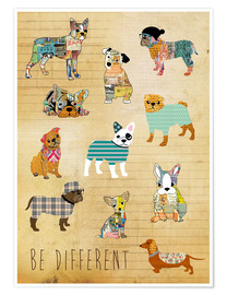 Póster be different dogs