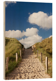 Madera  Sylt, path through dunes - Markus Lange