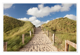 Póster Sylt, path through dunes