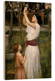 Cuadro de madera  Recogiendo flores del almendro - John William Waterhouse