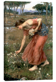 Lienzo  Narciso - John William Waterhouse