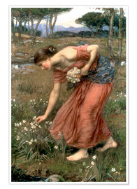 Póster  Narciso - John William Waterhouse
