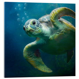 Cuadro de metacrilato  Bubbles, the cute sea turtle - Photoplace Creative