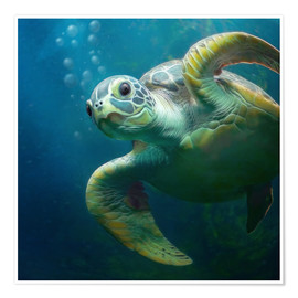 Póster  Bubbles, the cute sea turtle - Photoplace Creative