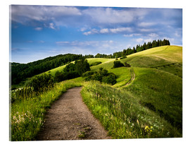Metacrilato  Path over Rolling Hills in Summer - Andreas Wonisch