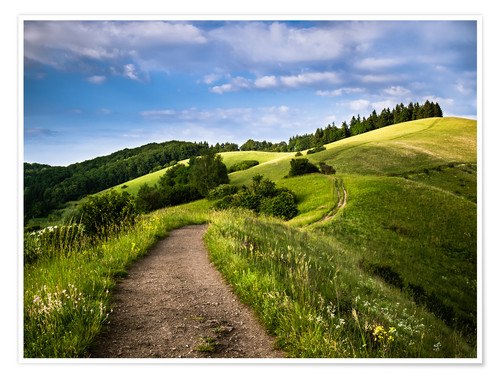 Póster Path over Rolling Hills in Summer