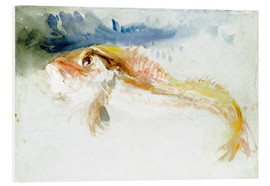 Cuadro de PVC  A Gurnard - Joseph Mallord William Turner