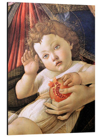 Cuadro de aluminio  Christ Child from the Madonna of the Pomegranate - Sandro Botticelli