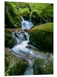 Cuadro de PVC  Little Waterfall in Black Forest - Andreas Wonisch