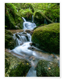 Póster  Little Waterfall in Black Forest - Andreas Wonisch