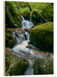 Madera  Little Waterfall in Black Forest - Andreas Wonisch