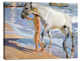 Lienzo  Washing the Horse - Joaquin Sorolla y Bastida