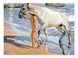 Póster  Washing the Horse - Joaquin Sorolla y Bastida