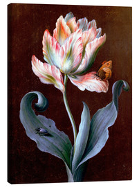 Lienzo  Parrot Tulip with Butterfly and Beetle - Barbara Regina Dietzsch