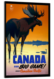 Cuadro de metacrilato  Canada - big game - Travel Collection
