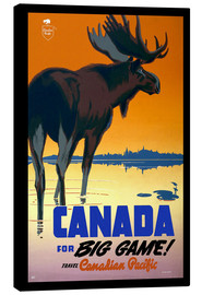 Lienzo  Canada - big game - Travel Collection