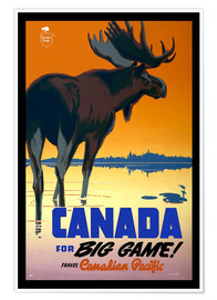 Póster  Canada - big game - Travel Collection
