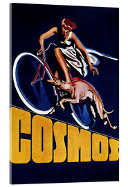 Cuadro de metacrilato  Cosmos bicycles - Advertising Collection