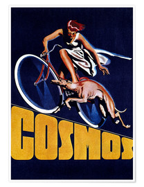 Póster Cosmos bicycles