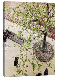 Lienzo  Calle desde arriba - Gustave Caillebotte