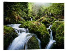 Metacrilato  Wild Creek in German Black Forest - Andreas Wonisch