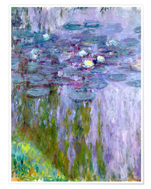 Póster Waterlilies