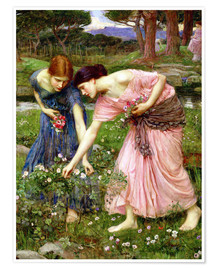 Póster  Recogiendo rosas en mayo - John William Waterhouse