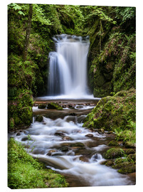 Lienzo  Waterfall of Geroldsau in the Black Forest - Andreas Wonisch