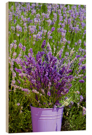 Cuadro de madera  Lavender in metal bucket - Thomas Klee