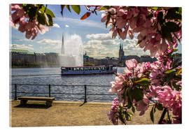 Cuadro de metacrilato  Cherry on the Alster in Hamburg for Spring - Dennis Stracke