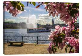 Lienzo  Cherry on the Alster in Hamburg for Spring - Dennis Stracke