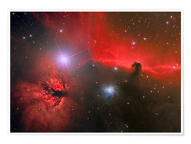 Póster Horsehead Nebula, constellation Orion