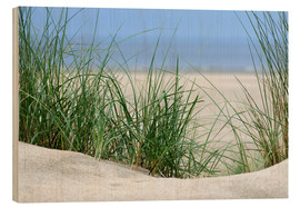 Cuadro de madera  Dune with sea view - Susanne Herppich