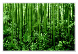 Póster  bamboo forest - GUGIGEI