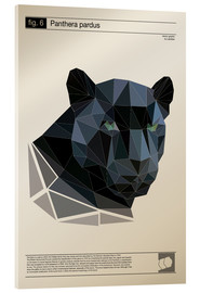 Cuadro de metacrilato  fig6 Polygonpanther Poster - Labelizer
